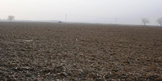 BRANDreal – Orná pôda 2 km od Piešťan
